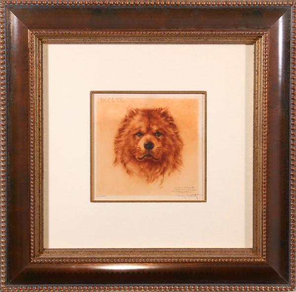 Mon Chien ( Dollar ( My Dog))