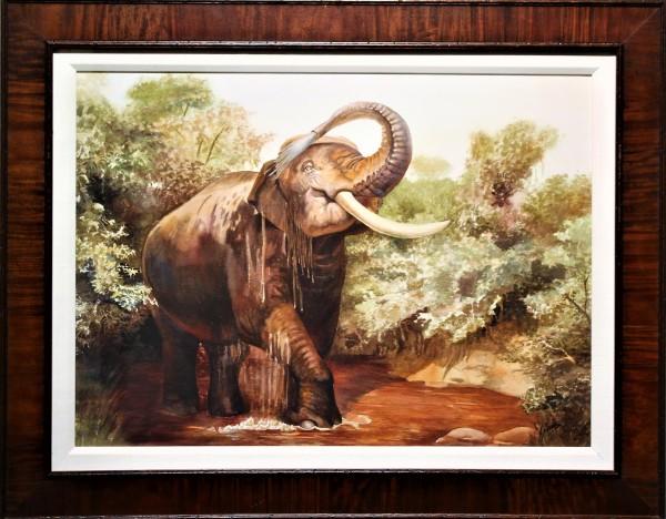 The Elephant Bath
